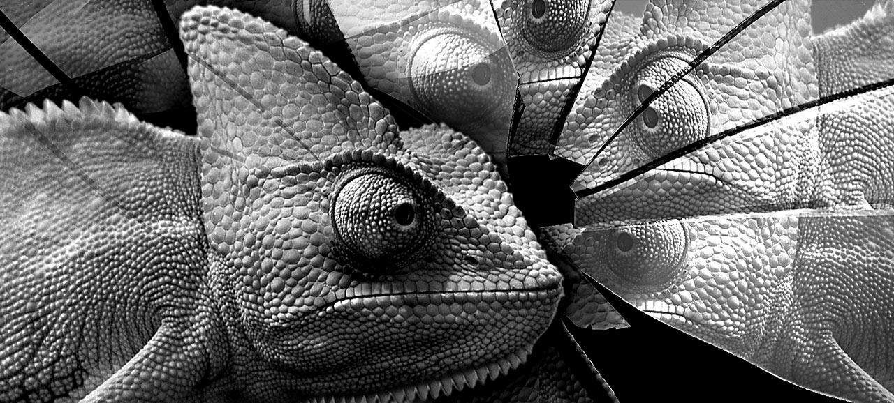 kameleon-i-razbijeno-ogledalo