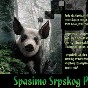 Spasimo Srpskog Pandu !